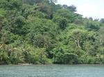 Bocas del Toro_41