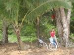 Bocas del Toro deel 3._18