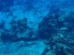 Bora Bora_55