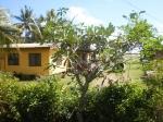 Fiji 1_12