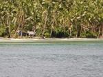 Fiji deel 2_18