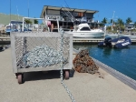 Fiji (3), Denarau - Musket Cove (november - december 2016)