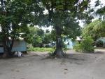 Kiribati _13