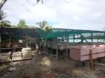 Kiribati _33