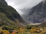 NZ_63