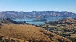 NZ_99