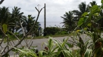 Niue_7