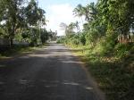 Tonga_58
