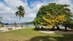 Vanuatu1_13