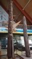 Vanuatu1_17